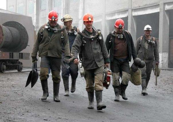 Kryvi REih miners 2015